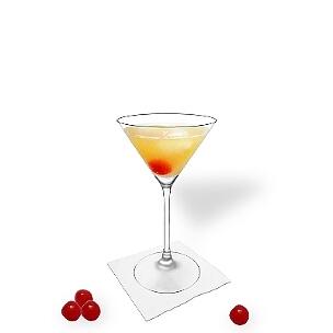Martini Gläser sind eine weitere gute Möglichkeit für Amaretto Sour.