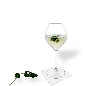 Hugo ist ein süsser Champagner-Cocktail aus Österreich mit Holunderblütensirup und Pfefferminze.